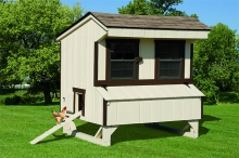 5x6 Duratemp Chicken Coop